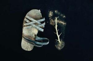 Sandalo e impronta con spina