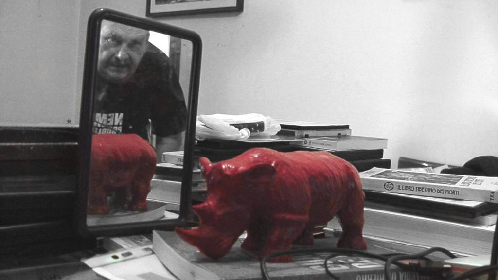 Red Rhino per CINETICA