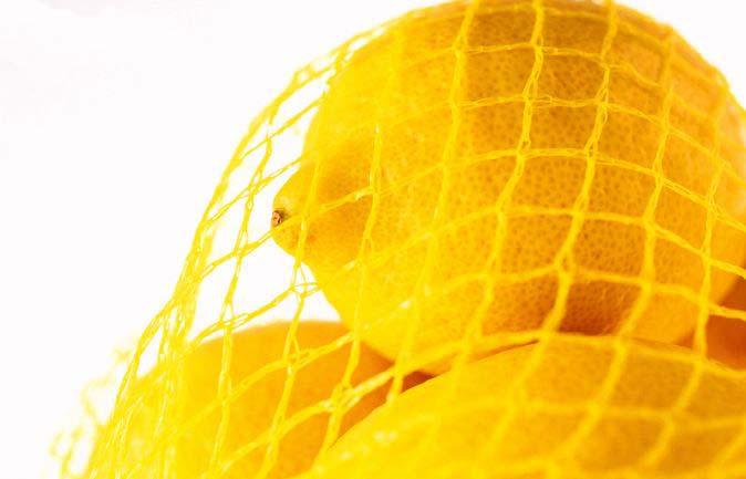 /nas/content/live/cssr/wp content/uploads/2015/12/limoni rete 155290