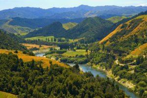 fiume Whanganui 02